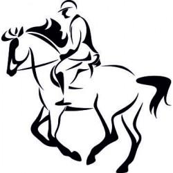 Aufkleber Pferd 38