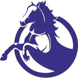 Autoaufkleber: Pferdesport Pferdesport