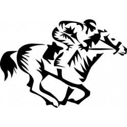Autoaufkleber: Pferdesport 2 Pferdesport 2