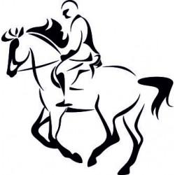 Autoaufkleber: Pferderennen Pferderennen
