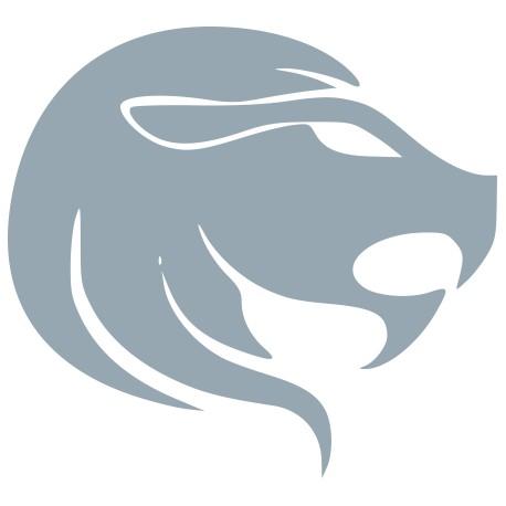 Aufkleber: Sternzeichen Löwe