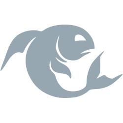Autoaufkleber: Sternzeichen Fisch Sternzeichen fisch