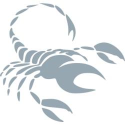 Autoaufkleber: Sternzeichen Skorpion Sternzeichen Skorpion