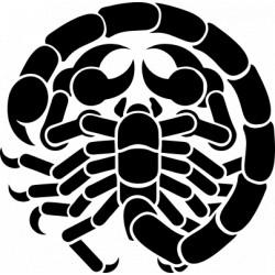 Autoaufkleber: Scorpion Aufkleber Scorpion Aufkleber