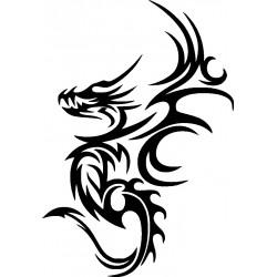 Drachen Aufkleber 30