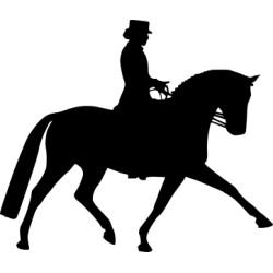 Autoaufkleber: Dressurreiten Aufkleber Pferd 41