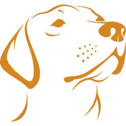 aufkleber autoaufkleber fl�gel, wolf, hund, babyaufkleber Labrador Aufkleber 1