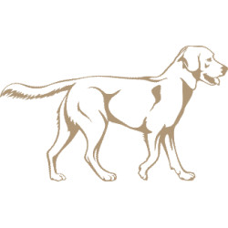 aufkleber autoaufkleber fl�gel, wolf, hund, babyaufkleber Labrador Aufkleber 2