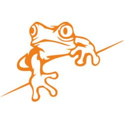 Autoaufkleber: Frosch Aufkleber Frosch Aufkleber