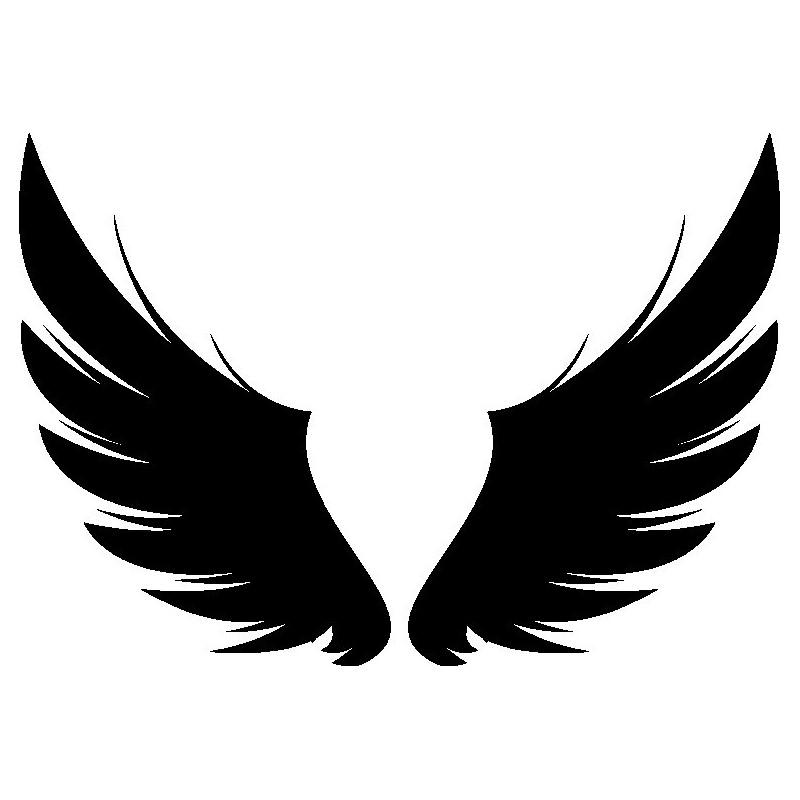 Wings The Design Studio