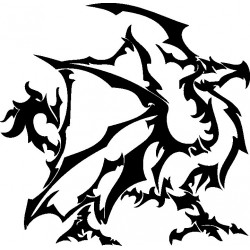 Drachen 47