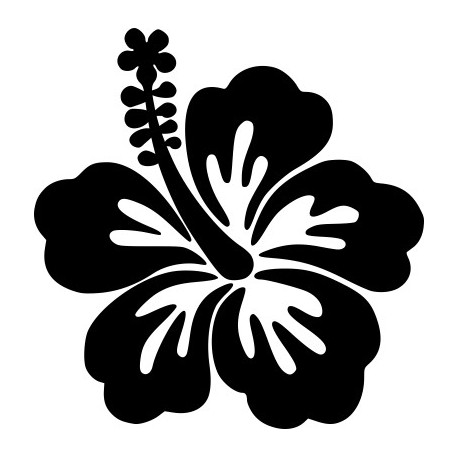 Hibiskusblüte Aufkleber 13