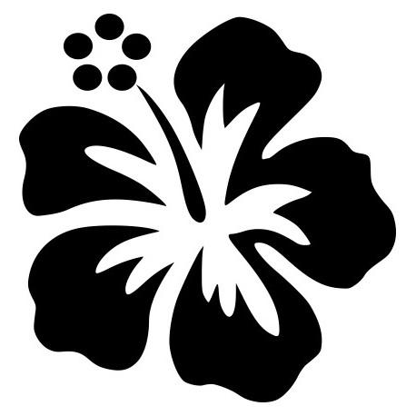 Aufkleber für Auto - Individuelle Hibiskus Autoaufkleber Blumen ...