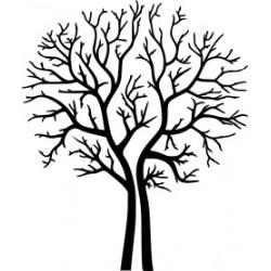 Autoaufkleber: Baum 2 - Hochzeit Beschriftungen, Autoaufkleber, Webetexte, Werbetechnik