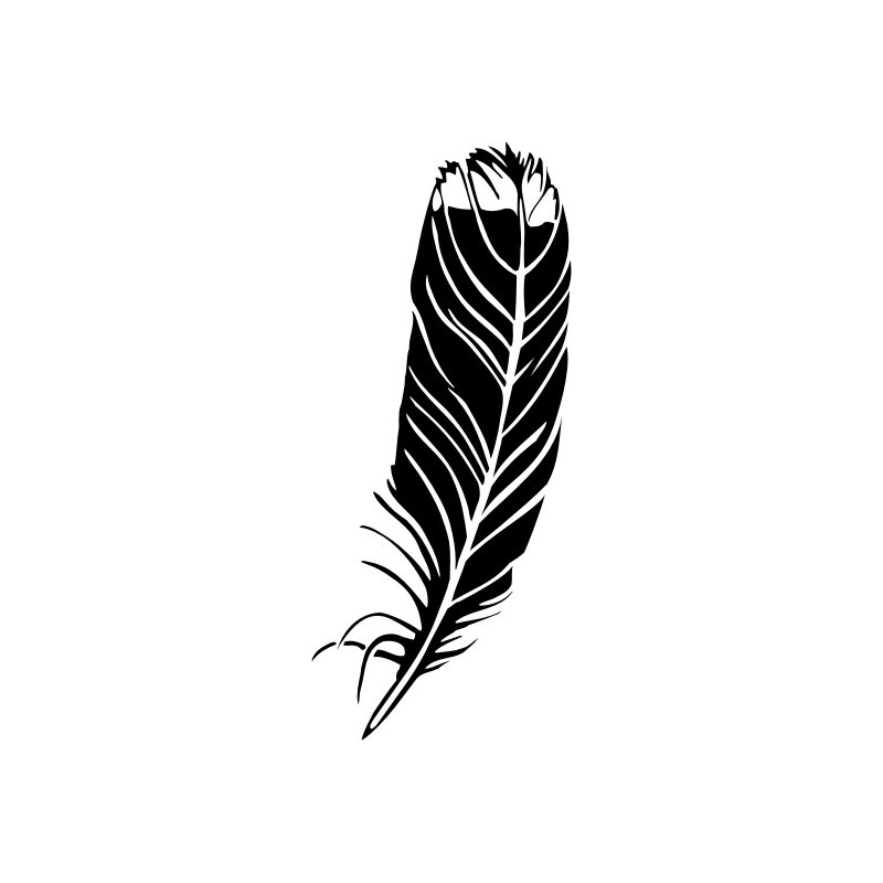 Indian Feather Clip Art Black And White Sketch Coloring Page